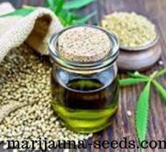hybrid cannabis seeds online